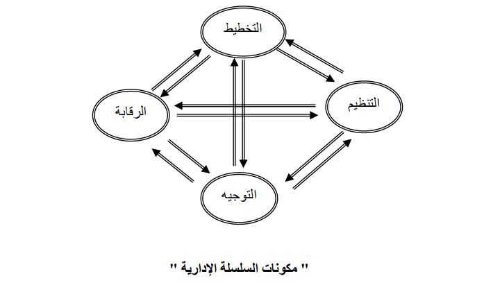 مكونات السلسلة الإدارية