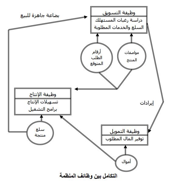 وظائف المنظمة - الوظائف الرئيسية والثانوية للمنظمة