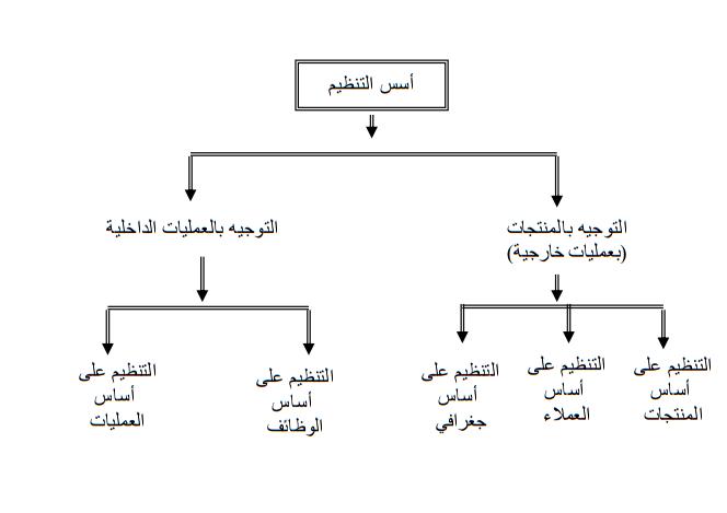 أسس التنظيم المتاحة لتنظيم المنشأة