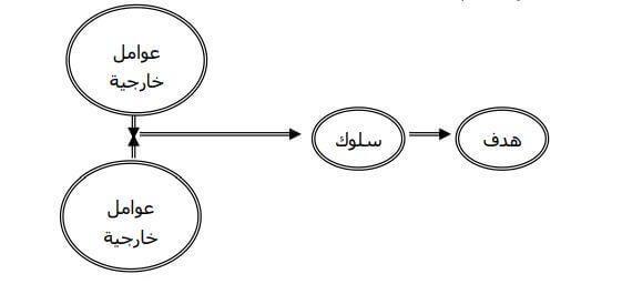 التفاعل بين العوامل الداخلية والخارجية