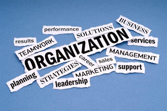 التنظيم - تعريف وأهداف وأنواع ومبادئ التنظيم